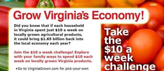 10-campaign-graphic-fall-line-farms